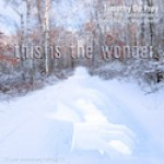 CD_DePrey_ThisIsTheWonder_Cover-copy